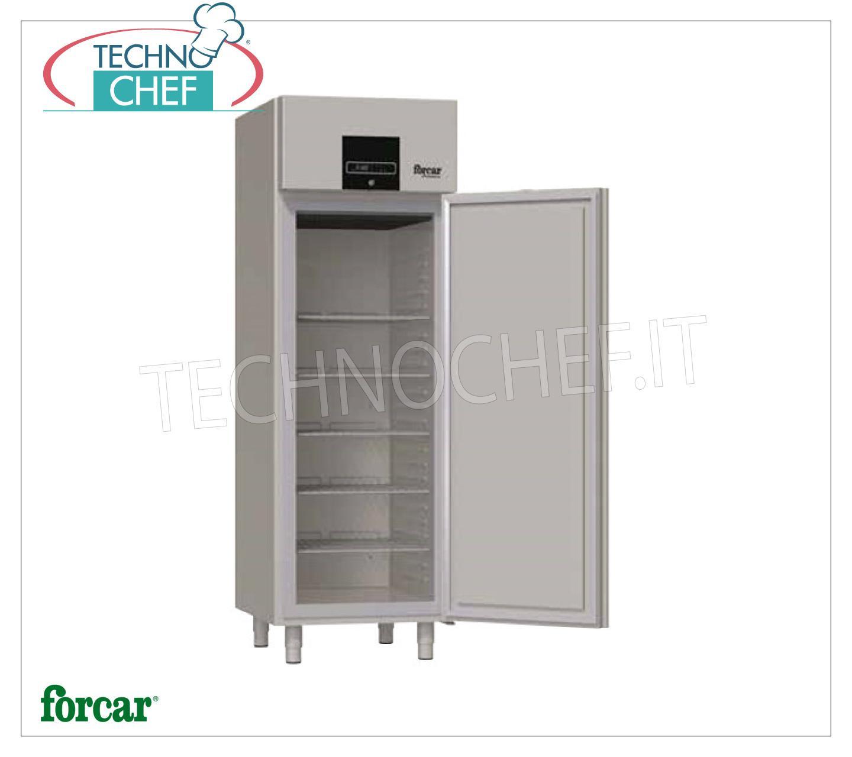 Armadio freezer industriale professionale 1 porta for Temperatura freezer
